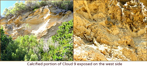 Calcified exposed portion of Cloud 9