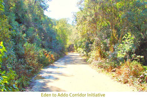 Baviaanskloof-part of the Eden to Addo Initiative