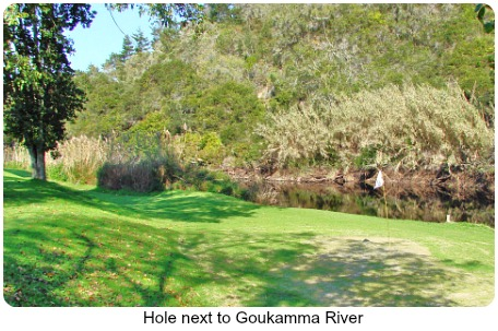 Hole at Goukamma river's edge
