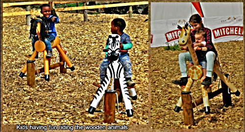 Wooden Animals in the children's  playground