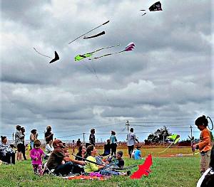 Eden Kite Festival