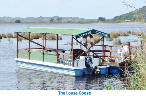 Loose Goose Cruise