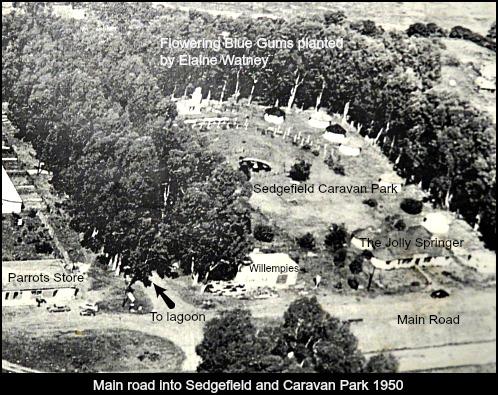 Sedgefield Caravan Park 1950