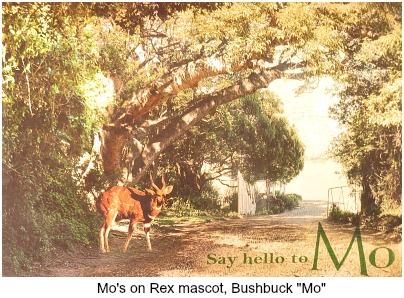 Bushbuck mascot Mo