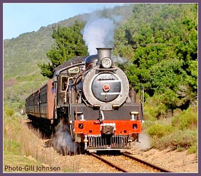 Choo Tjoe puffing through the Fynbos