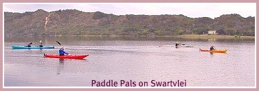 Paddle Pals on the Swartvlei