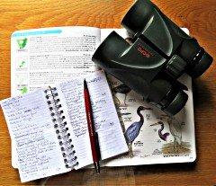 Sedgefield Bird List